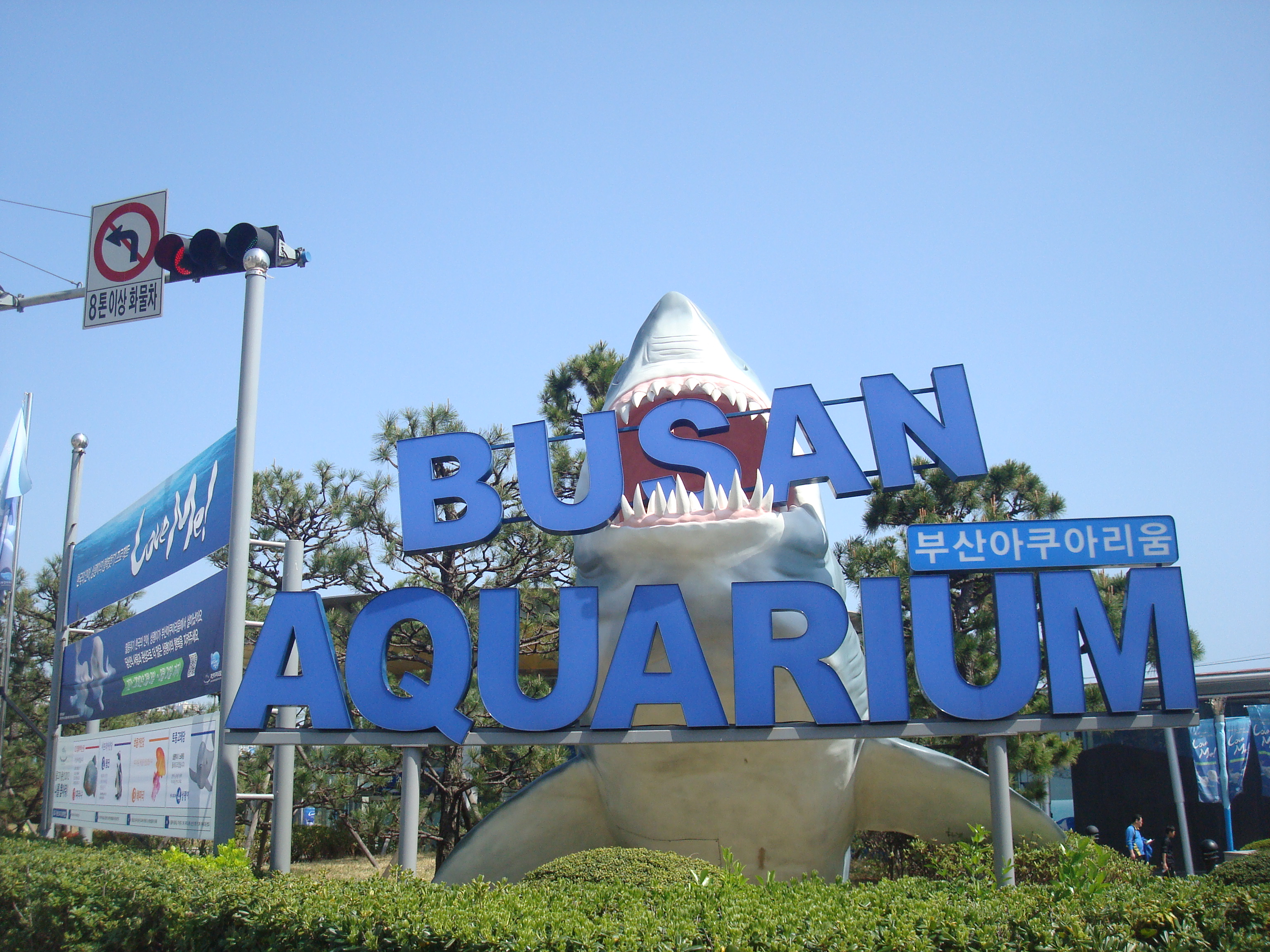 Busan Aquarium, Paradise Casino, The Beach and some good food. A ...